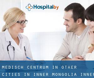 Medisch Centrum in Other Cities in Inner Mongolia (Inner Mongolia)